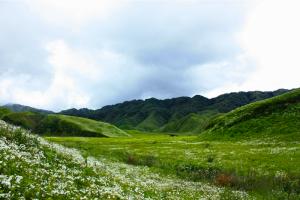 Dzükou-Valley